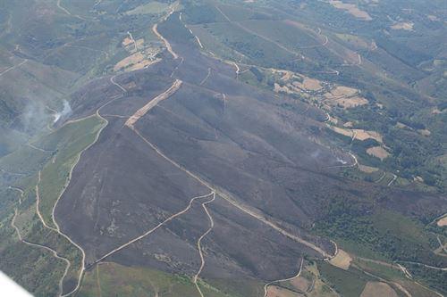 La única solución posible a los incendios es la gestión forestal 'activa'