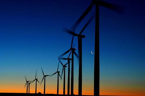 El Gobierno propone revisar este año el sistema de primas a las renovables
