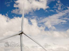 China's wind energy could soar up to 300 GW by 2020 – groups