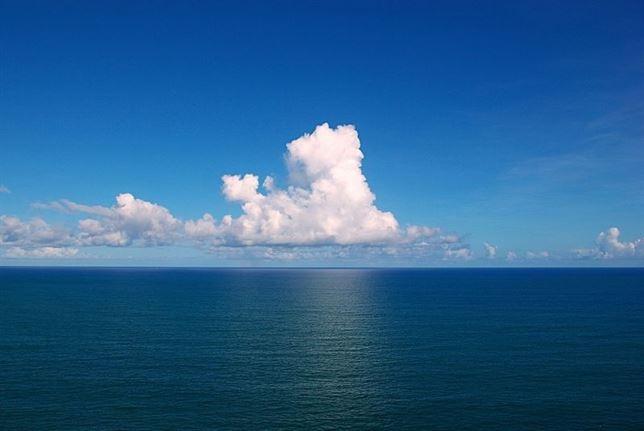 Los niveles de contaminantes en los océanos es 'brutal'