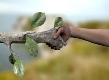 Gestión y Conservación de la Naturaleza, todo en este máster online