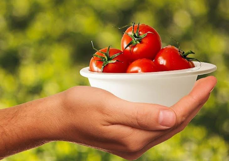 ¿Qué alimentos ecológicos contienen licopeno y para qué sirve?