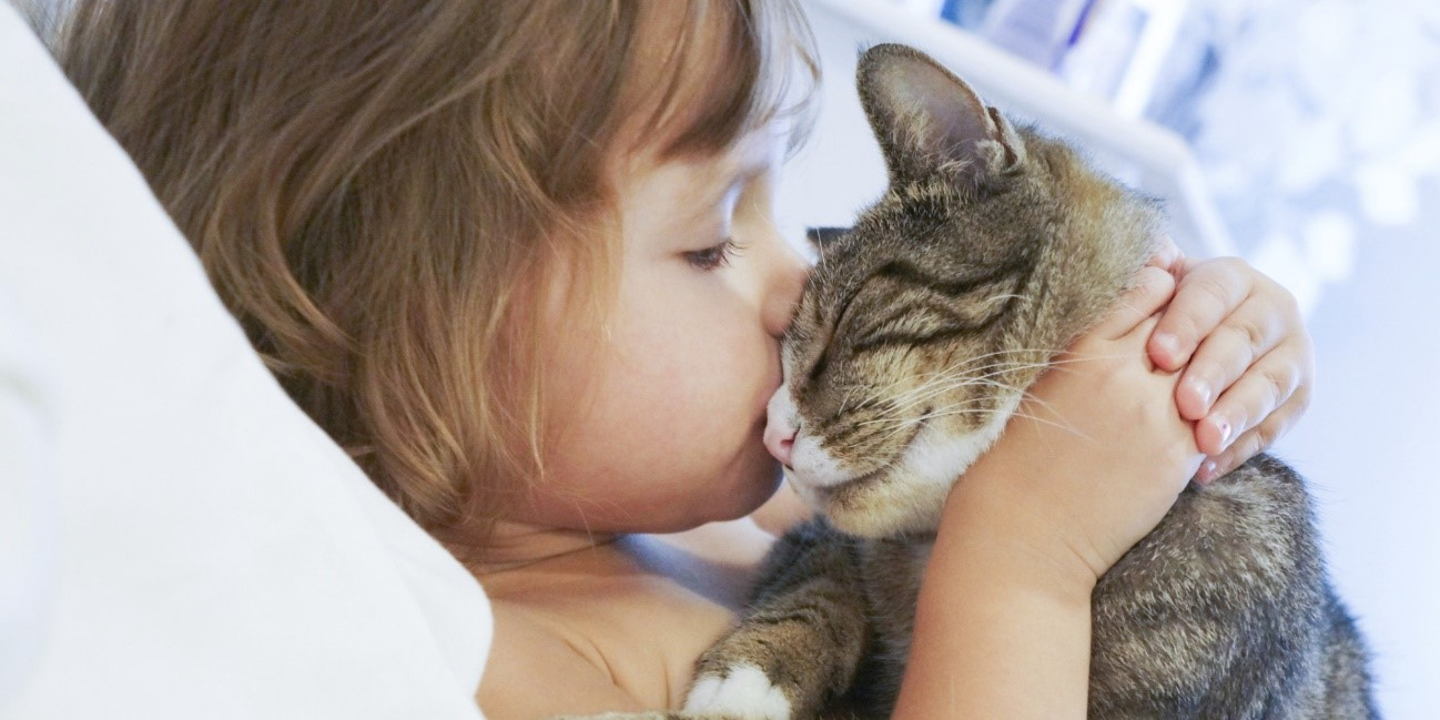 ¿Los gatos pueden amar?