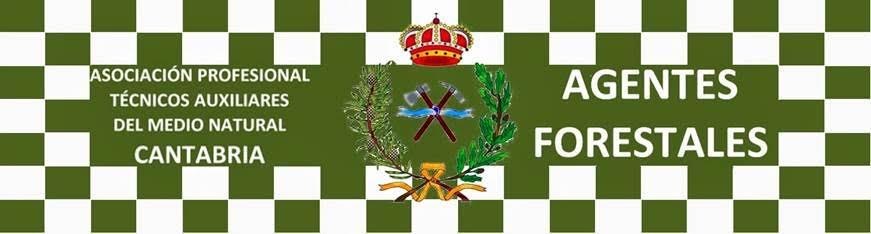 Cantabria registró quince juicios por agresiones a guardas de medio ambiente en siete años