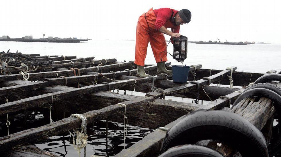 Baleares implementa un nuevo sistema de recogida de aceite vegetal