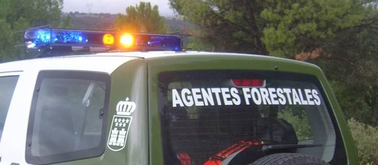 EQUO y los agentes ambientales denuncian el aumento de agresiones a este colectivo