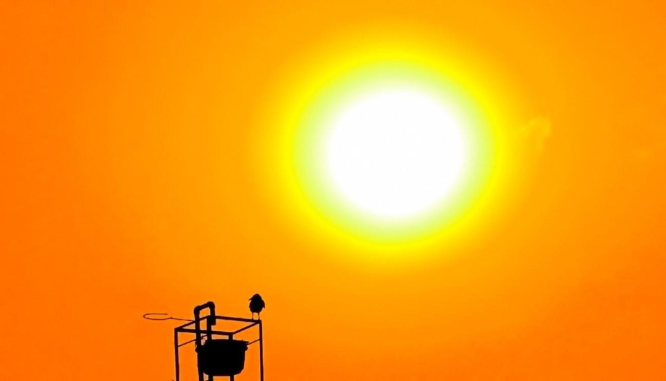 Dos aplicaciones tan diferentes como eficaces de la energía solar