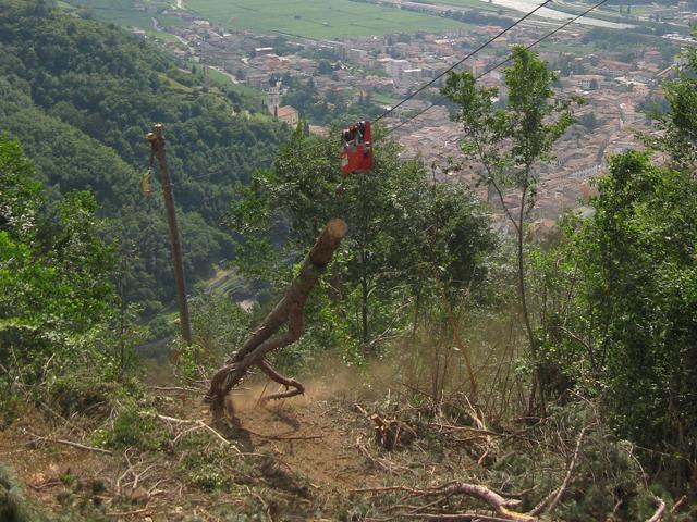 Soluciones para el aprovechamiento energético de la biomasa en las zonas montañosas