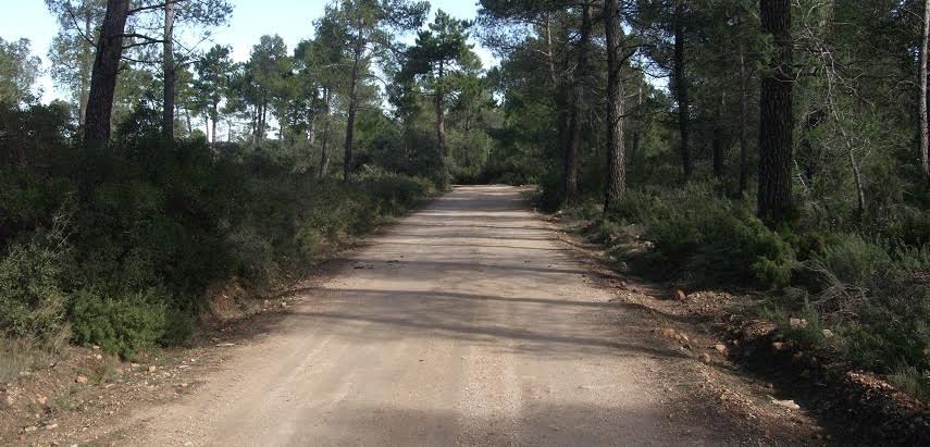 Se restringe el acceso de vehículos a motor por la pista forestal del Monte Abantos para evitar incendios