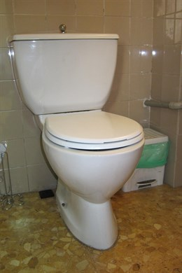 La 'pesadilla' de las toallitas del WC