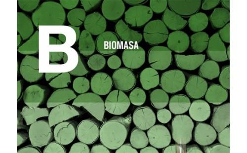 Biomasa + Biomasa + Biomasa
