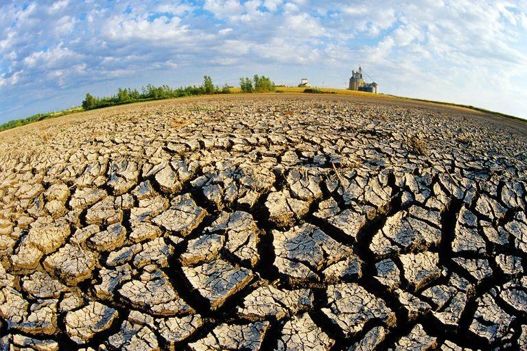 Prevenir la desertificación o morir en el intento