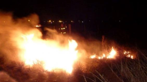 Argentina. Voraz incendio en la reserva ecológica de Punta Lara