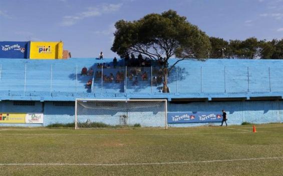 Paraguay: Un club de fútbol nombró como socio a un árbol para generar conciencia