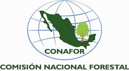 México. Desarrollan un sistema de monitoreo de emisiones de carbono forestal