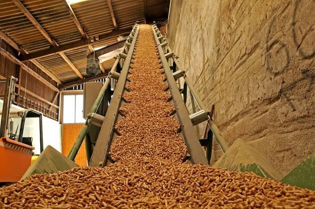 'Biomasa', la energía que 'prima' en España, SEAS te propone un gran curso sobre esta energía renovable