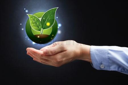 La agricultura ecológica en casa