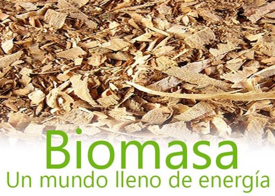 Biomasa, una energía verde y sostenible de enorme presente y futuro en España, INNOTEC te forma