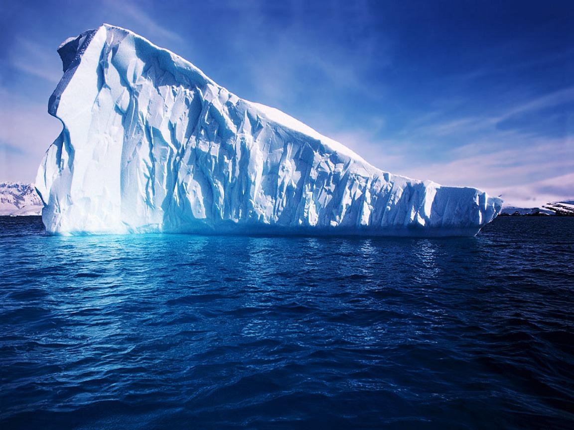 Especies del mar profundo colonizan la plataforma continental de la Antártida