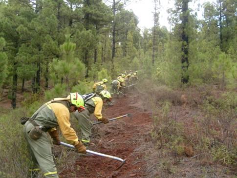 Los 'diez mandamientos' para la prevención de incendios forestales