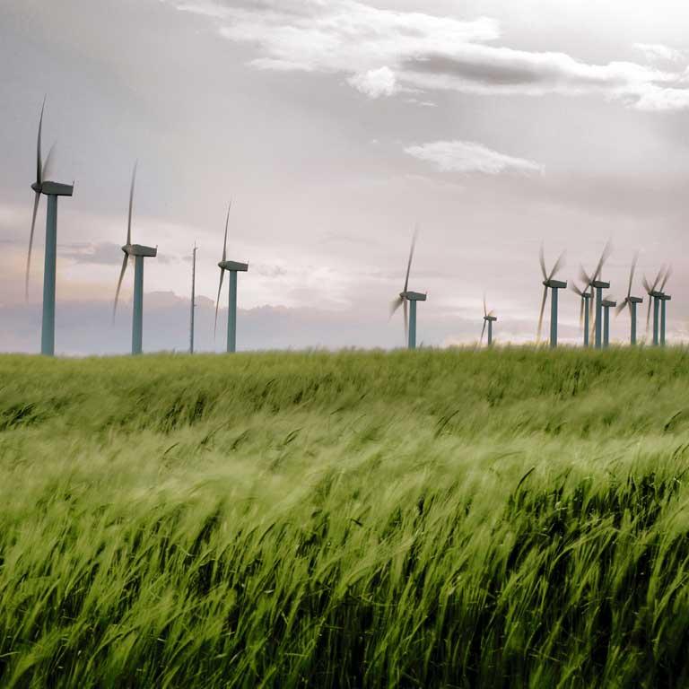 Los Consejos en materia energética a ejecutar por el Gobierno de Rajoy