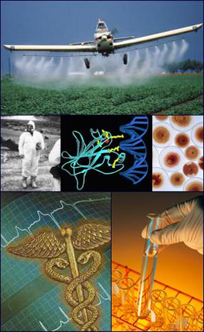 Conclusiones del VI Congreso Internacional de Medicina Ambiental