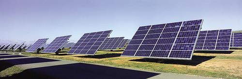 Ecoo propone limitar la titularidad y potencia de plantas fotovoltaicas para generar empleo