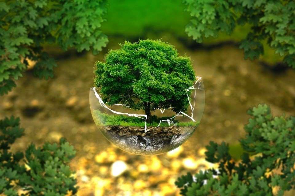 Tecnología verde para 'liquidar' el CO2