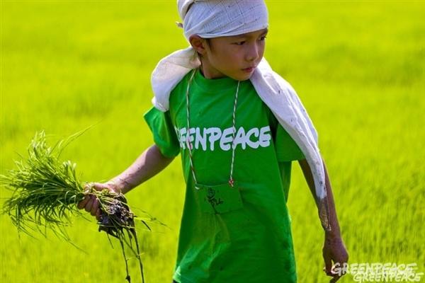 ¡Gran noticia! Los tentáculos de Monsanto se encogen