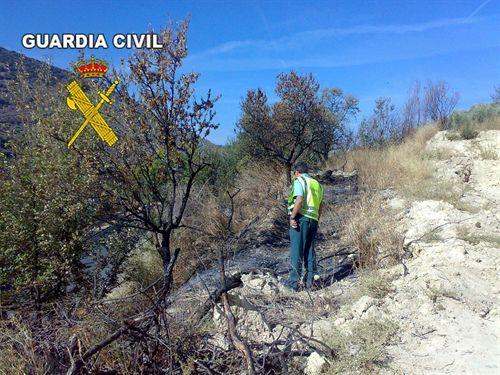 Detenido un hombre de 60 años como presunto autor de un incendio en una zona forestal de Torres (Jaén)