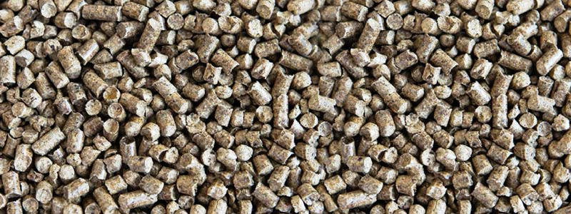 Biomasa, la fuente limpia de hidrógeno