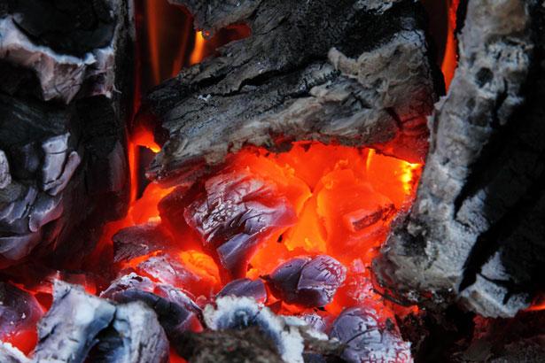 WWF alerta de un nuevo incremento de las emisiones de CO2 derivadas de la quema de carbón