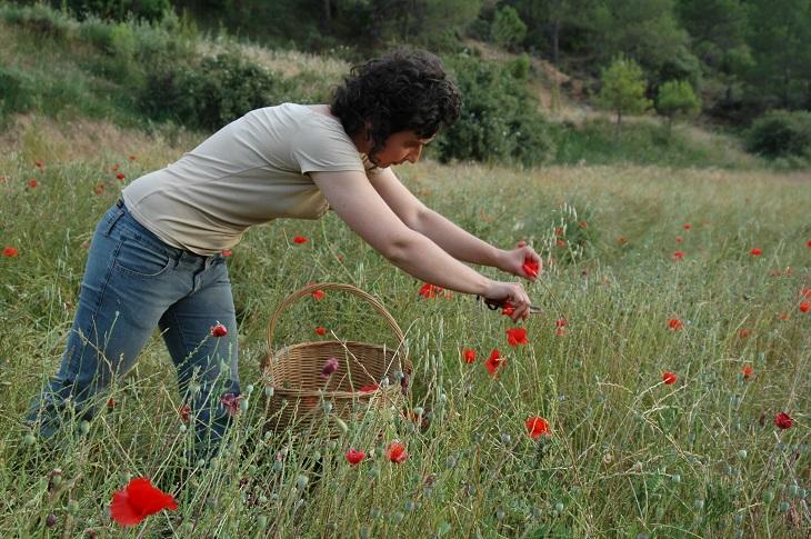 MATARRANIA: un proyecto de vida con productos 100% naturales