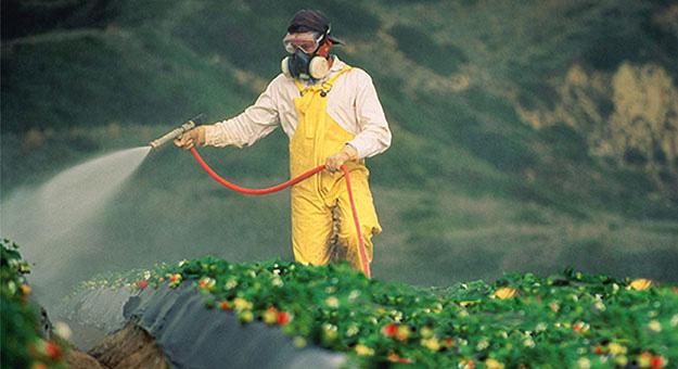 Glifosato, nefasto para la salud y nefasto para el medio ambiente
