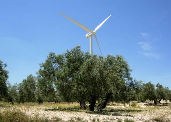 Energías renovables para generar empleo en Andalucía