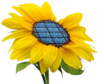 Máster INNOTEC on-line de Energías Renovables