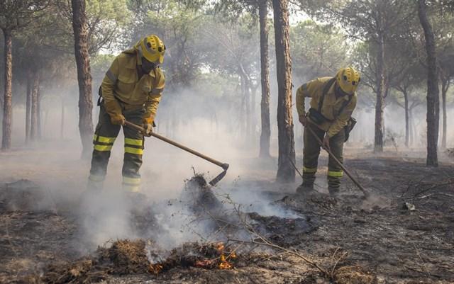 Responsables de la carbonería investigados por el incendio de Doñana declaran este jueves