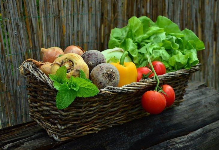 Alimentos ecológicos: vitales para un desarrollo cognitivo optimo en los niños