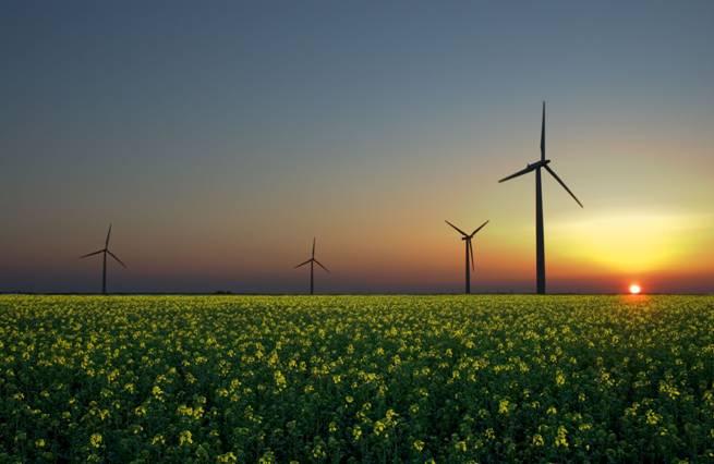 WWF exige un impulso definitivo a las energías renovables