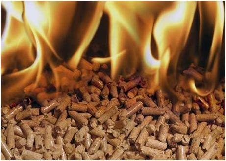 La energía del futuro y del presente, la biomasa