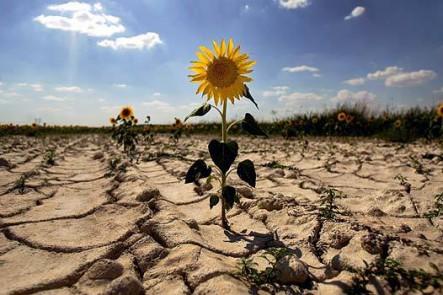 Chile. Inauguran el mayor centro de investigación nacional en cambio climático