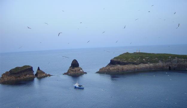 La Secretaría General del Mar participa en la campaña del Proyecto BIOROCK en la Reserva Marina de las Islas Columbretes