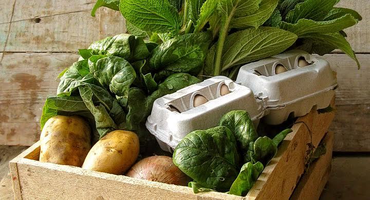 Las mil razones para consumir productos ecológicos
