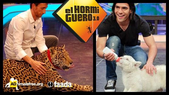 18,000 quejas de espectadores por el uso de animales salvajes en El Hormiguero de Antena 3