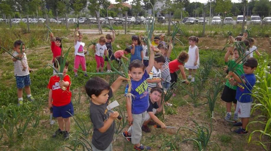 4ª edición del Premio Huertos Educativos Ecológicos