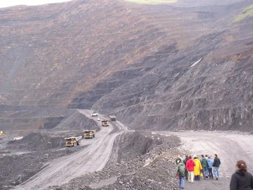 Restauración ecológica de espacios degradados por la minería