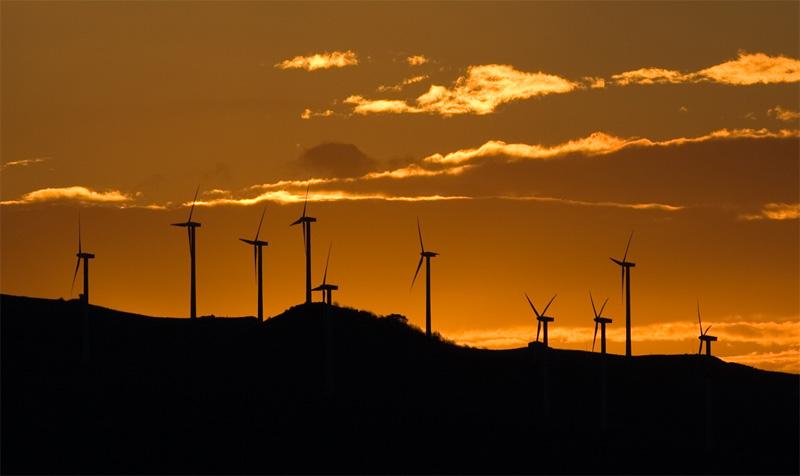 NO a los combustibles fósiles