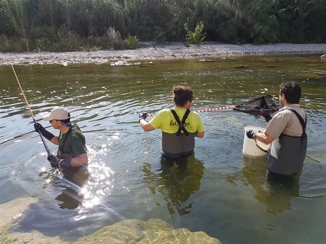 Un estudio de la UPV contribuirá a determinar un nuevo caudal ecológico para el río Serpis