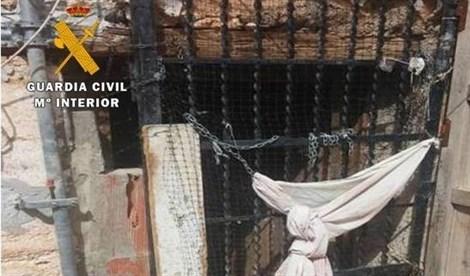 Rescatan a dos perros abandonados y hallan a otro muerto en una casa abandonada de Yeste
