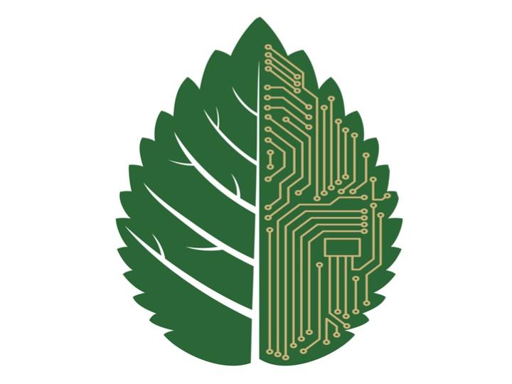 Tecnologías verdes que sorprenden gratamente